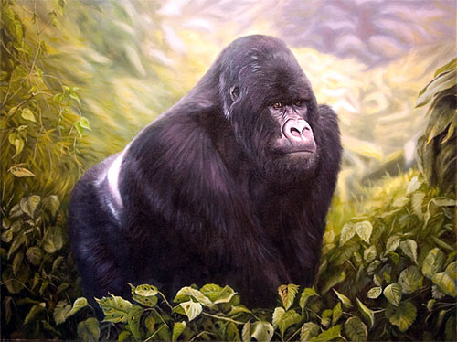 mountain-gorilla-31.jpg