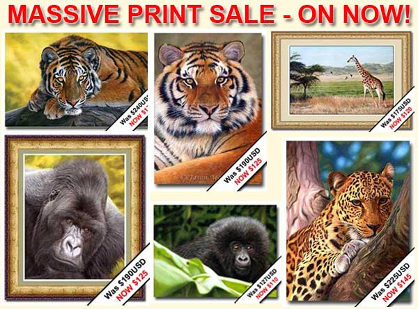 wildlife art print sale