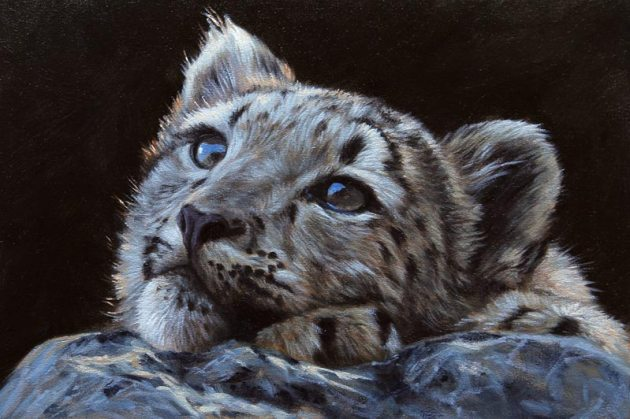 snow-leopard-cub-painting-for-sale