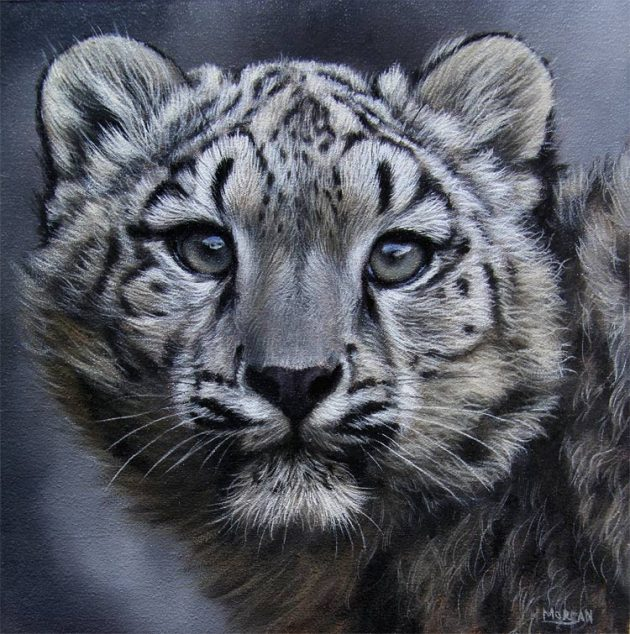 snow leopard cub painting for sale